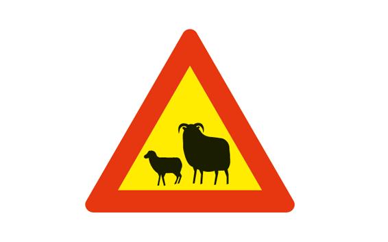 DANGER ANIMALS AHEAD